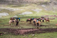 Locals offering horse rides