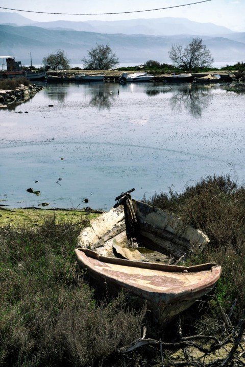 Boat Rotting on Land
