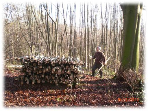 bushcraft, courses, courses, skills