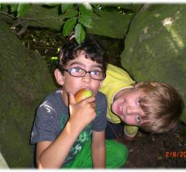family | bushcraft | courses | south east | Kent