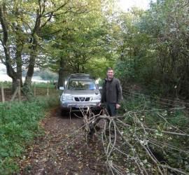 storm damage | bushcraft | Kent