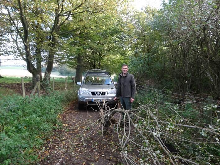 storm damage   bushcraft   Kent
