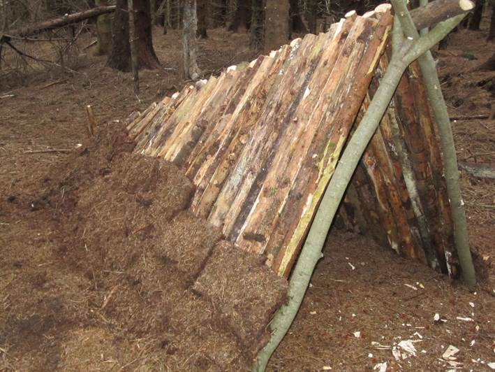 Debris shelter - adding the covering