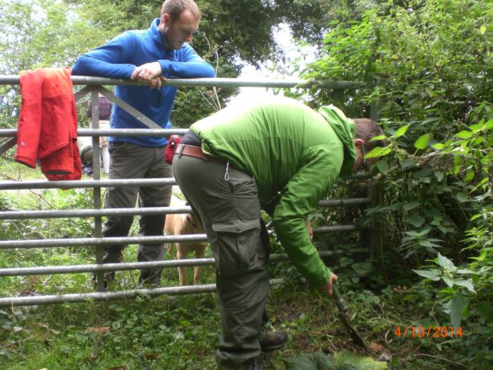 Dave digging up a burdock root