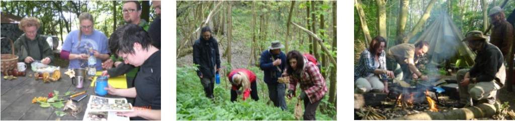 1 day foraging course | Kent | south east | London | UK