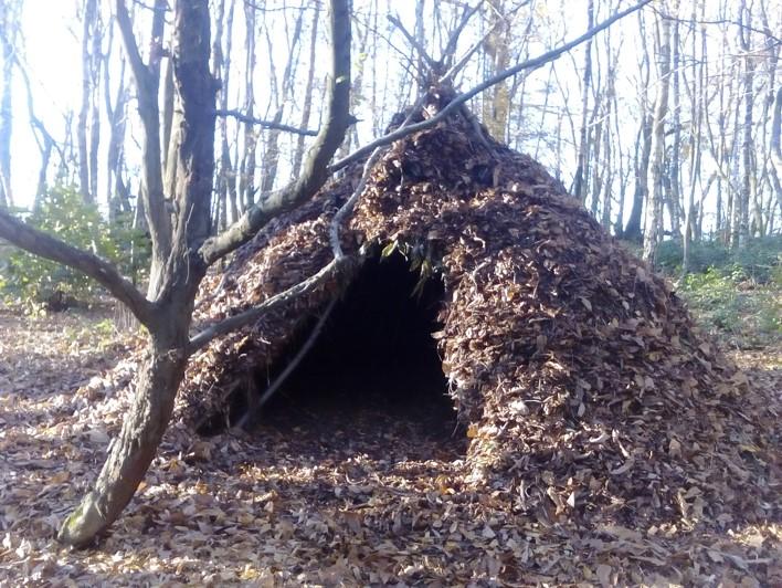 Wiki-up debris shelter