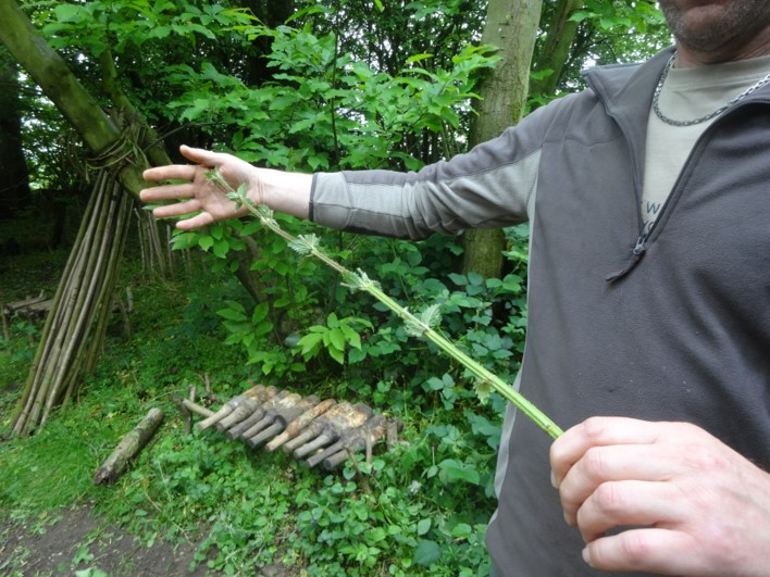 Stinging nettle cordage