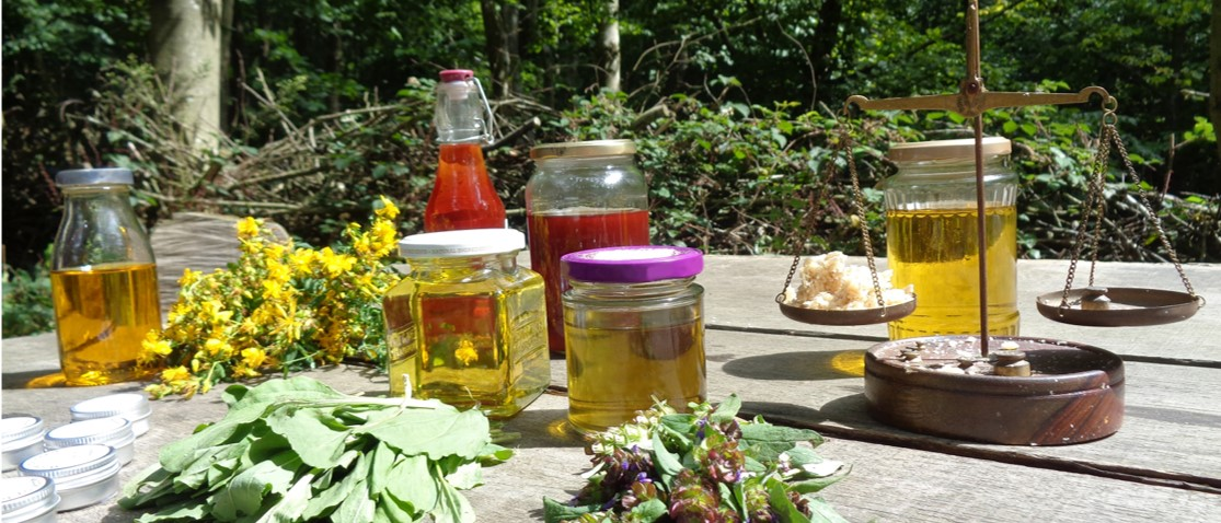 herbal remedies   courses   Kent   south east   London