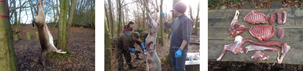 deer preparation and butchery | Kent | south east | London | bushcraft