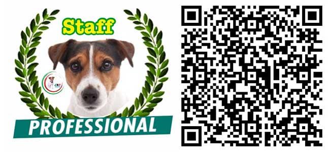 professional Canali Social
