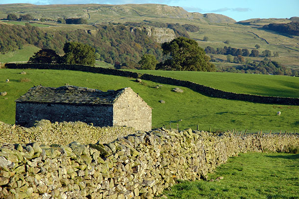 Limestone walls and scars in Ribblesdale