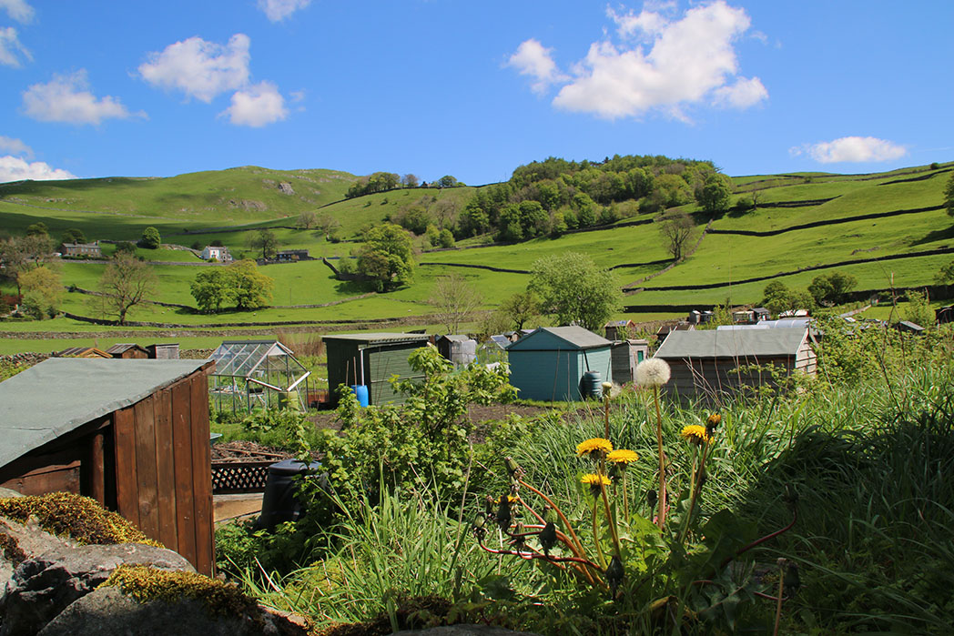 Allotments in Settle, Ribblesdale