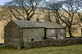 dales cowside old