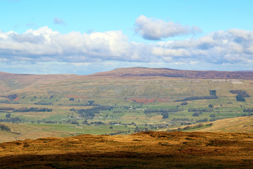 dales wensley