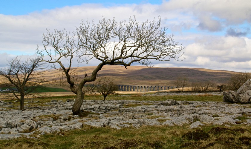 Yorkshire Ribblehead