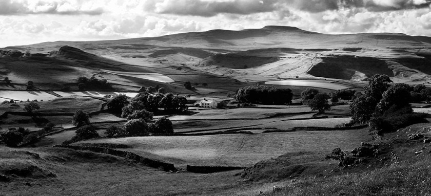 Dales playinglight