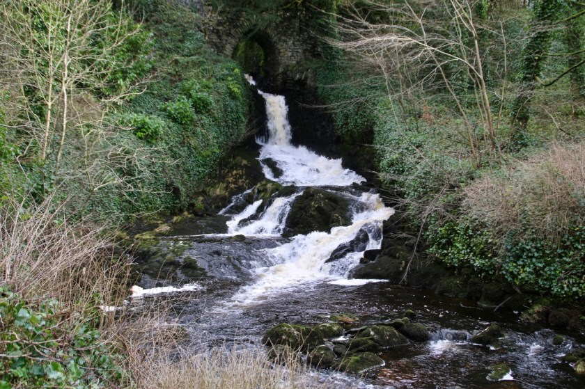 dales waterfalls