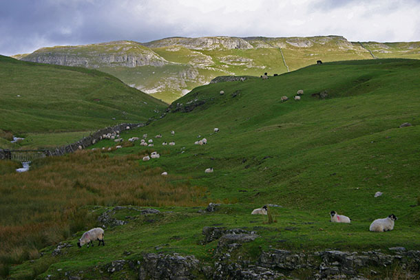 Attermire Scar from Scaleber, Ribblesdale