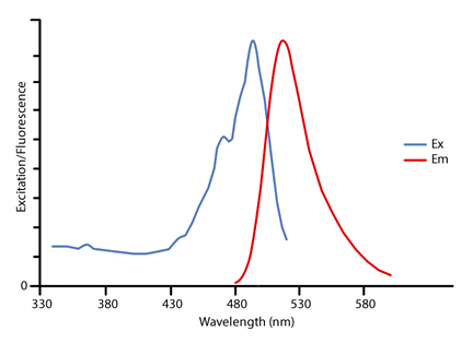 Light Absorption Spectra Light Dispersion Wiring Diagram