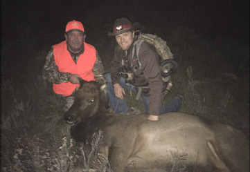 Cow elk 2016 1st rifle with guide Tyler Jackson