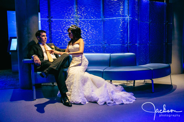 Michele and Jonathans Wedding at the Baltimore Aquarium  Jackson Photography  Modern Wedding