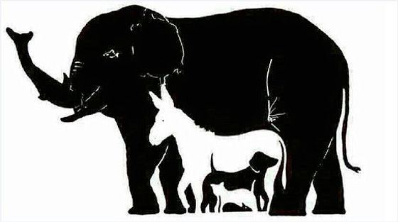 Imagem quebra cabeça 16 animais