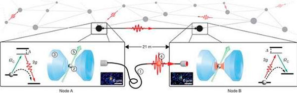 rede quântica
