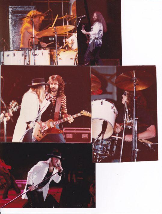 38 - Collage -'81 Tour