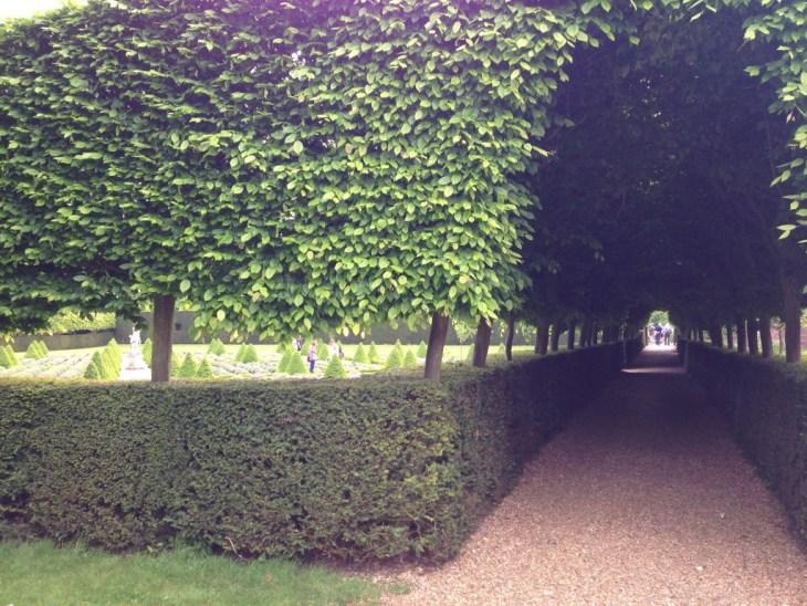 Ham House, Richmond, topiary