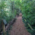 Camley Street Natural Park, King's Cross, London