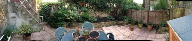 Our Garden on the 22nd Oct