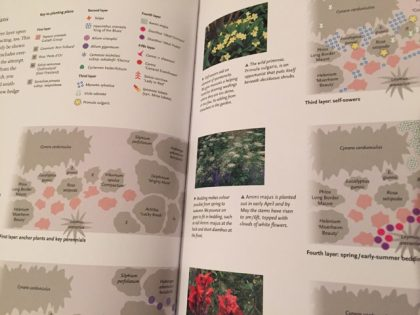 Succession Gardening for Adventurous Gardeners explains with diagrams, photos and clear text - it's an exciting read