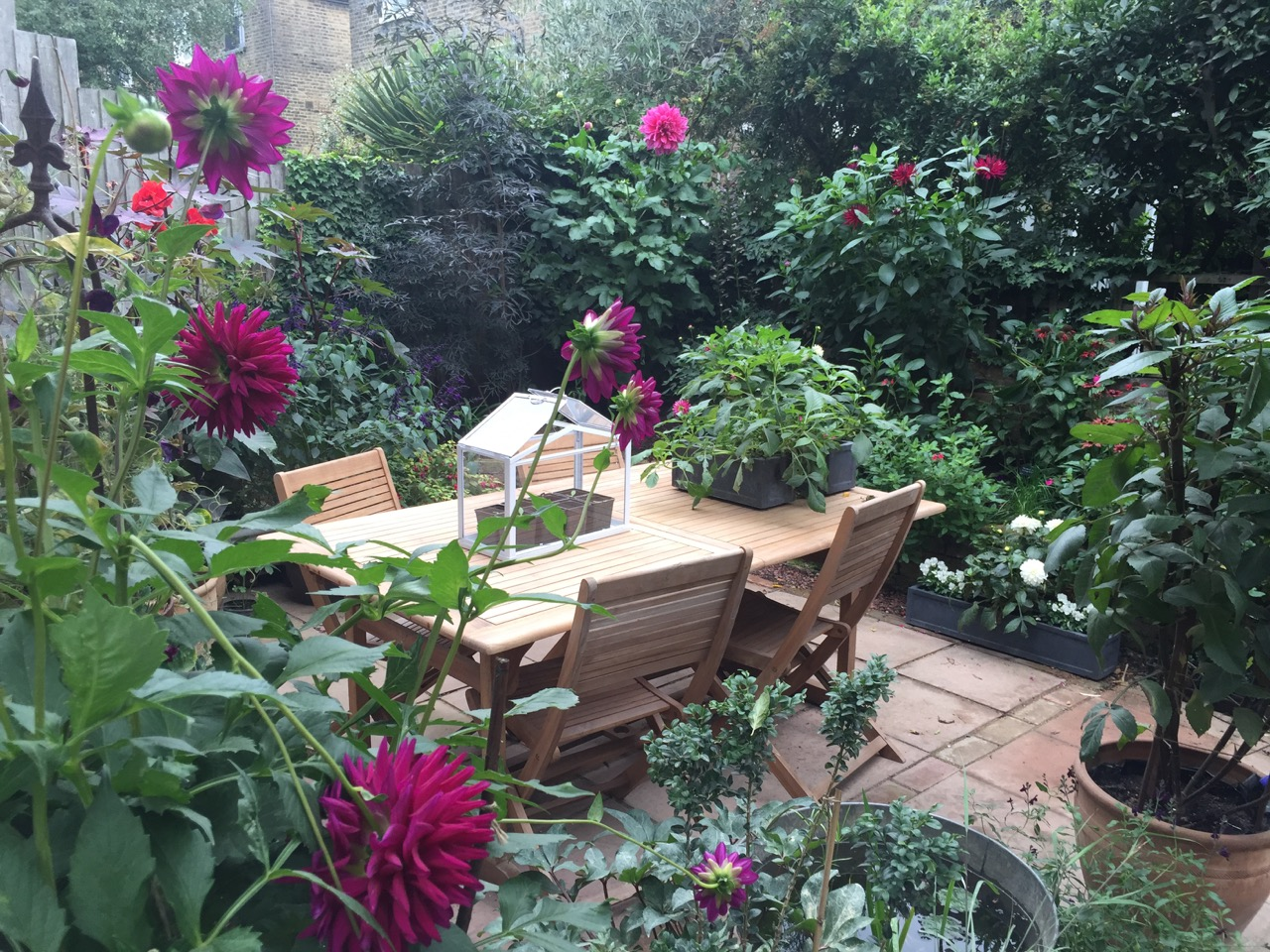 Big Dreams, Small Spaces: The Plan | Jack Wallington Garden Design ...