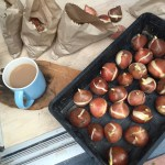 Planting spring bulbs – tulips, snowdrops, fritillaria and alliums