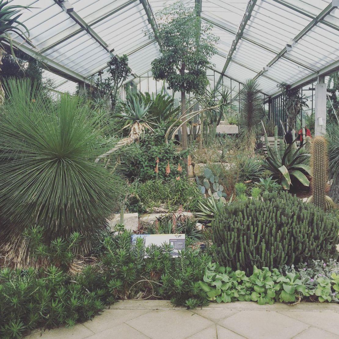 Princess of Wales Conservatory, Kew