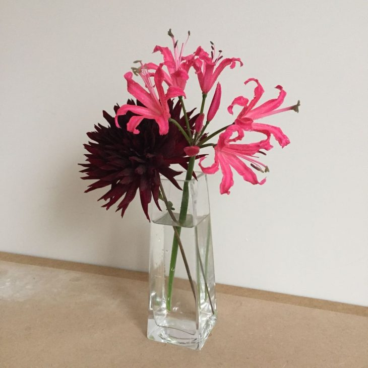Dahlia, Nerine, cut flowers