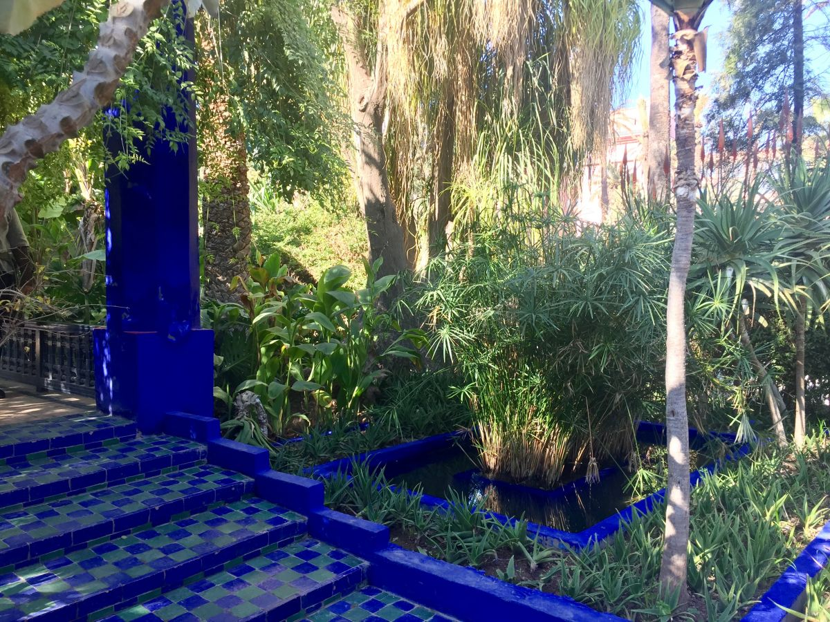 Marrakesh Part Four Jardin Majorelle Jack Wallington Garden