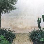 Marrakesh (Part Five): Le Jardin Secret by Tom Stuart-Smith