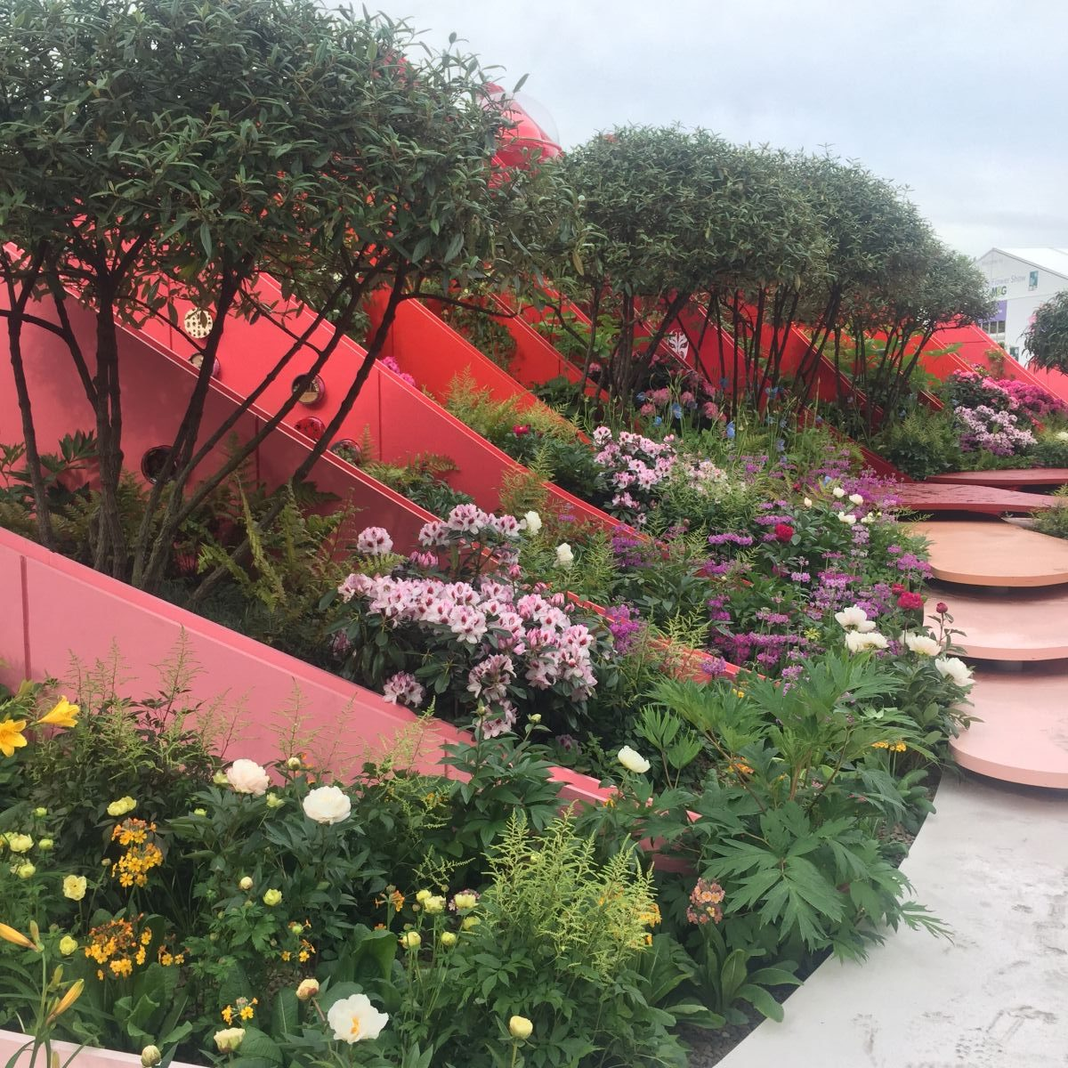 rhs chelsea flower show 2017 press day highlights jack. Black Bedroom Furniture Sets. Home Design Ideas