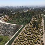 56 Photos of Californian Gardens: from Facebook and Google to Hollywood via Alcatraz