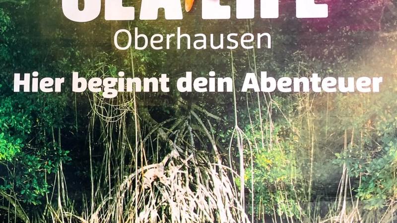 1 Tag im Sea Life Oberhausen
