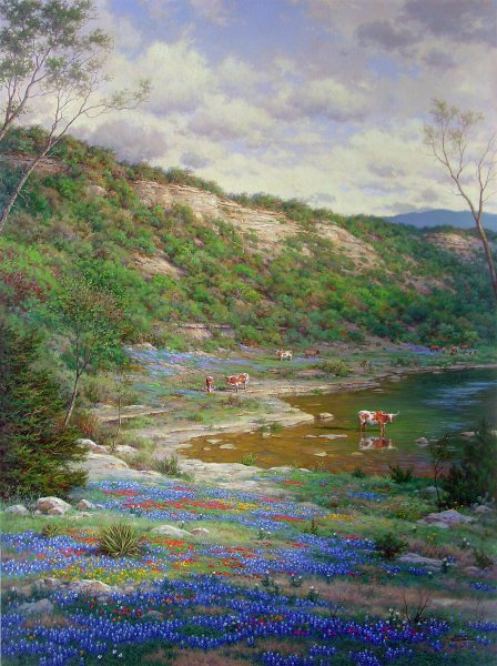 Texas Spring Limited Edition Giclee Print by Larry Dyke