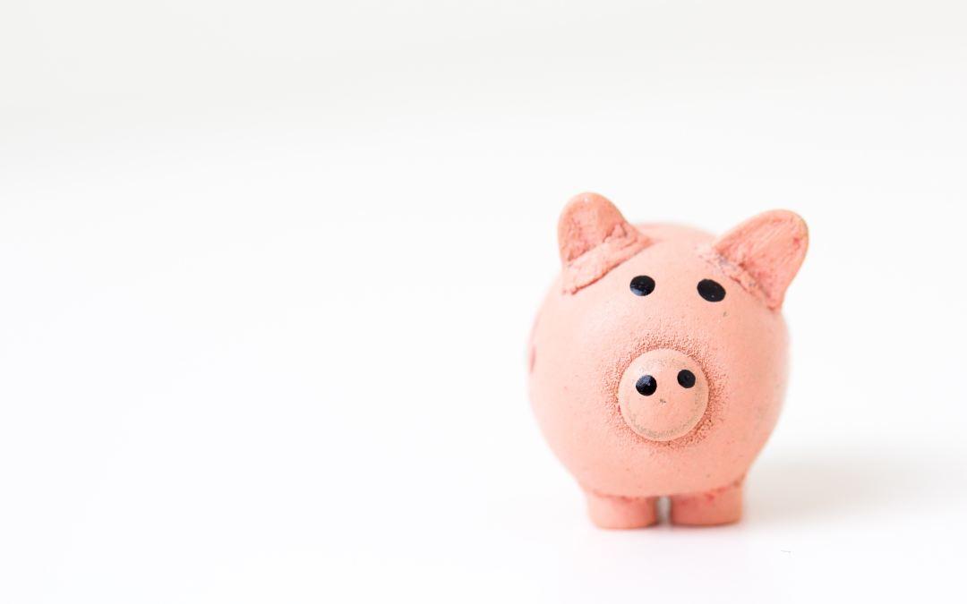 Budgeting 101 Series: Emergency Fund