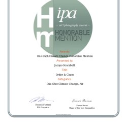 IPA Award 2017