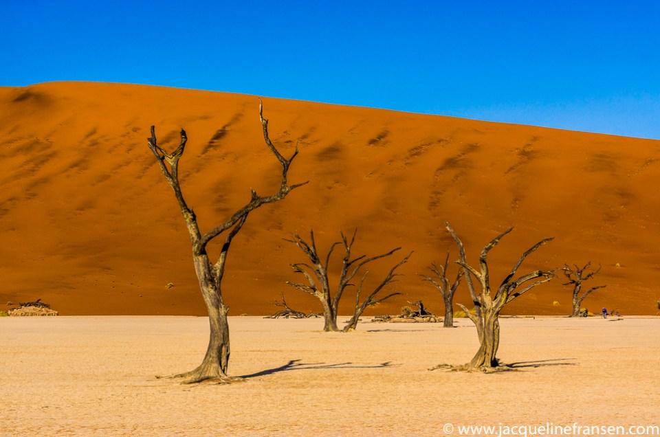 In beeld – Rondreis Namibië