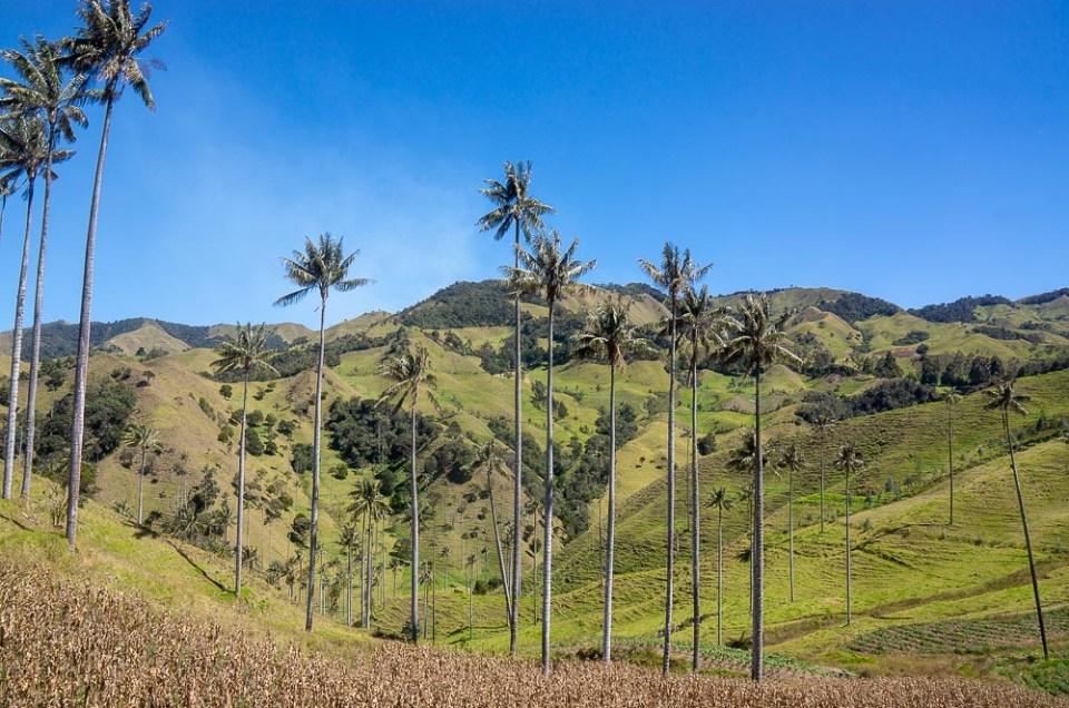Een 3 weekse rondreis door Colombia