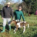 Nasce primeira terneira inseminada através do programa Dissemina em Jacuizinho