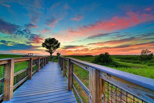 Sunset, Plum Island, New York