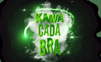 Kawasaki Kawa Kada Bra