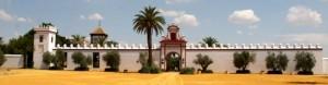 Hacienda de Orán, Los Palacios (Sevilla)